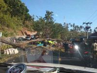 Pohon Tumbang Menimpa Mobil di Jalan Manado-Tomohon