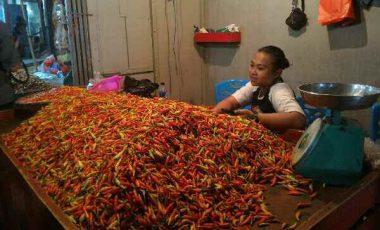Rica Rp110.000/kg, Tomat Rp6.000/kg