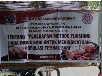 PKM Desa Sendangan, Kecamatan Sonder, Kabupaten Minahasa, Provinsi Sulawesi Utara, Tentang Penerapan Metode Flushing pada Induk Babi untuk Meningkatkan Populasi Ternak Babi