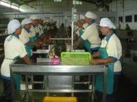 Perusahaan di Sulut tak Mampu UMP Rp3 Juta, Ini Penjelasannya